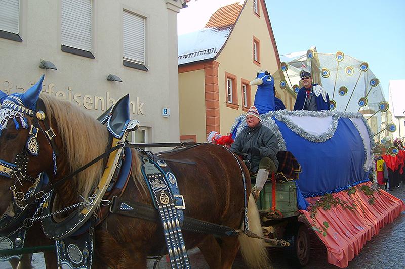Prinzenwagen 2010 - Pfau